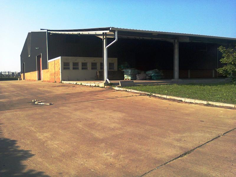 Property For Rent in Alton, Richards Bay 5